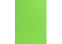 Бумага цветная тонированная зеленая ф.А4 Спонсор